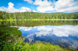 Reflection Lake in the Mt. Rainier National Park